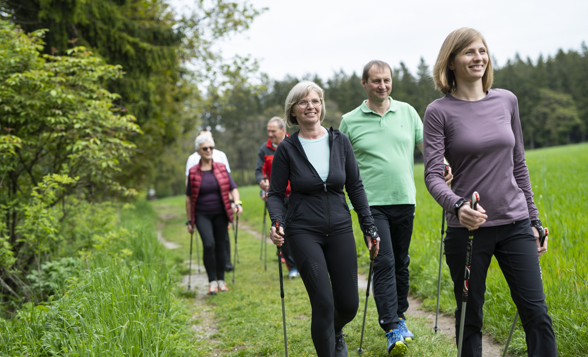 Gruppe beim Nordic Walking